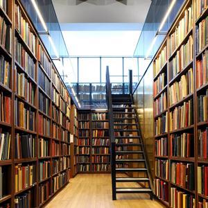Библиотеки Рошаля